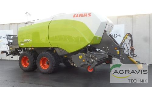 Claas Quadrant 5200 FC Year of Build 2016 Melle-Wellingholzhausen