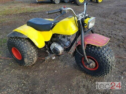 Honda Atc 200 Dreirad Oldtimer Traventhal