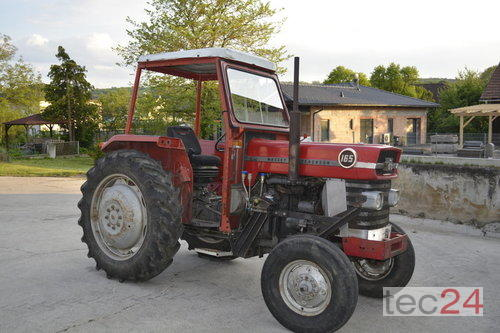 Massey Ferguson Mf 165 Año de fabricación 1971 Gr. Wetzdorf