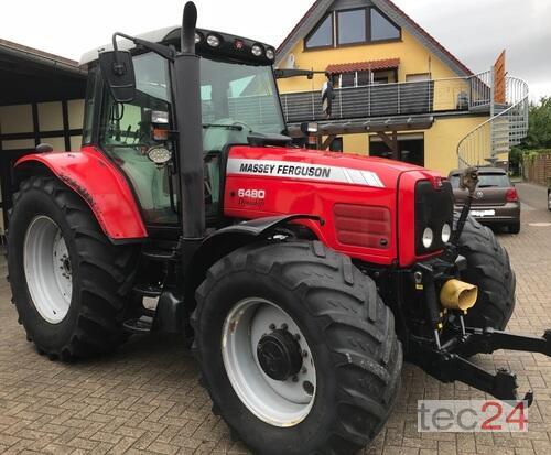 Massey Ferguson 6480 Allrad DYNA 4 Traktor