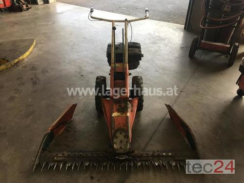 Reform 115 4takt Motor Kirchdorf