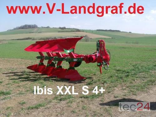 Unia Ibis XXL S 4+