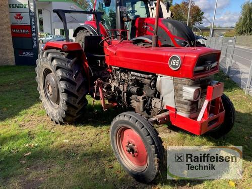 Massey Ferguson 165 Year of Build 1966 Bebra
