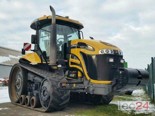 Caterpillar Challenger 765 C Rok výroby 2010 Pragsdorf