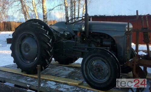 Oldtimer - Traktor BayWa - Ferguson Ted-20