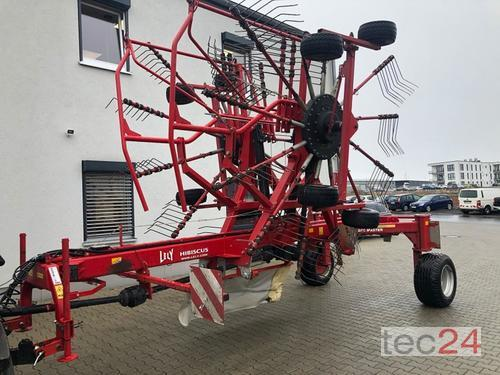 Lely Hibiscus 855 Master